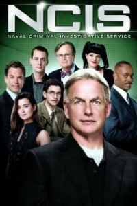 ncis1 200x300 ACTOR OF THE MONTH: ADAM HUSS
